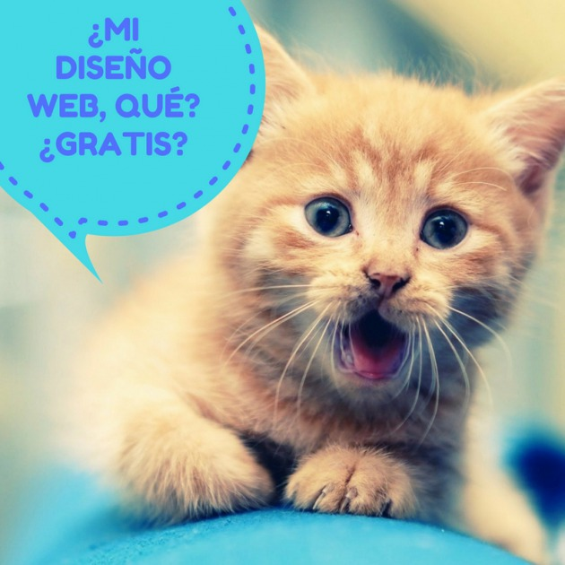 diseño web wordpress gratis coach2coach