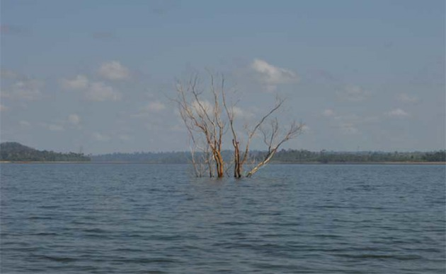 The Belo Monte dam drowned forests and riverside indigenous and traditional communities. Photo by Zoe Sullivan